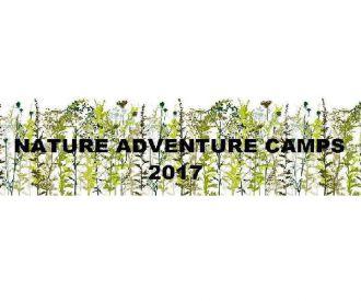 Day Camps - Campamentos de día