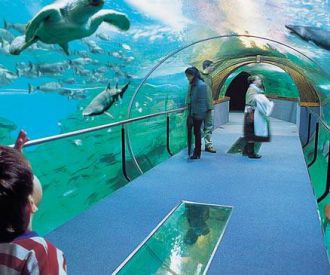 Aquarium Donostia-San Sebastián-background