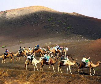 Paseo en camello por las dunas de Maspalomas