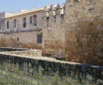 Excursión de 1 día a Córdoba desde Sevilla