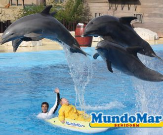Mundomar Benidorm-background