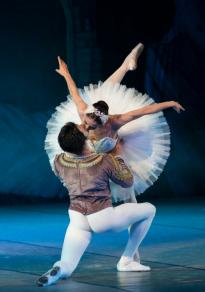 Cartel de la película Mayerling - Ballet (Cine)