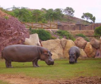 Terra Natura - Murcia-background