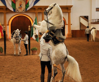 Gala Verano Fundación Real Escuela Andaluza Del Arte Ecuestre