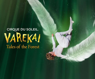 Varekai-background