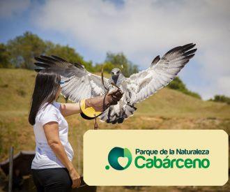 Parque de Cabárceno-background