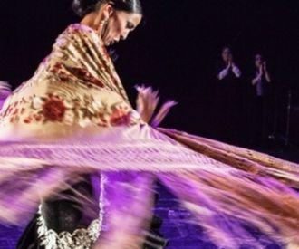 Emociones - Espectáculo flamenco