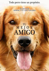 Cartel de la película Tu mejor amigo