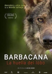 Cartel de la película Barbacana, la huella del lobo