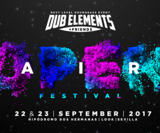 Dub Elements & Friends-background